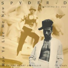 How Ya Like Me Now - Spyder-D, DJ DOC