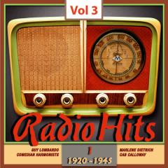 Radio Hits, Vol. 3 - Various Artists