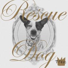 Rescue Dog - Train