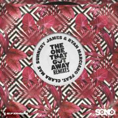 The One That Got Away (Remixes)