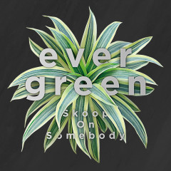 Evergreen - Skoop On Somebody