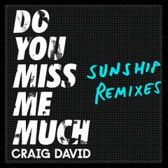 Do You Miss Me Much (Sunship Remixes) - Craig David