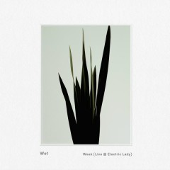 Weak (Live @ Electric Lady) - Wet
