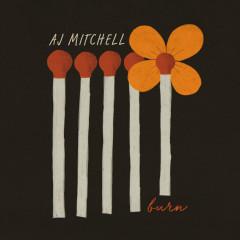 Burn - AJ Mitchell