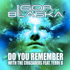 Do You Remember - Igor Blaska, Terri B