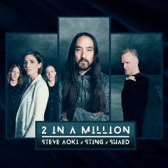 2 In A Million - Steve Aoki, Sting, SHAED