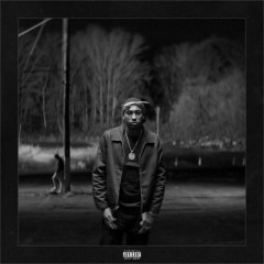 Real Is Rare (Edgewood) / The Woods (Single)