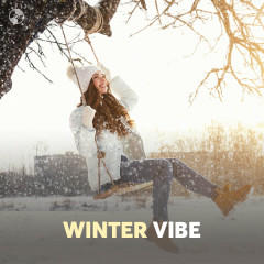 Winter Vibe - Various Artists