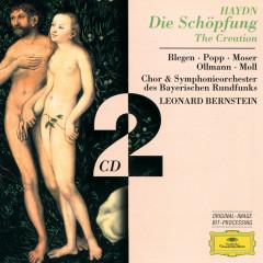 Haydn, J.: The Creation - Symphonieorchester des Bayerischen Rundfunks, Leonard Bernstein