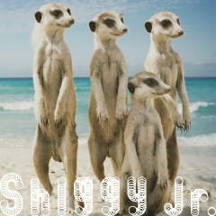 Summer Time Love - Shiggy Jr.