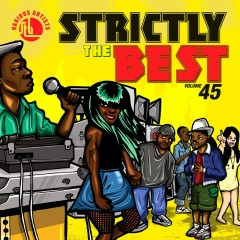 Strictly The Best Vol. 45