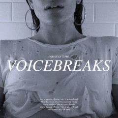 Voicebreaks (Single)