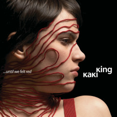 ... Until We Felt Red - Kaki King