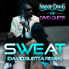 Sweat/Wet - Snoop Dogg, David Guetta