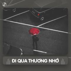Thay Lời Muốn Nói: Đi Qua Thương Nhớ - Various Artists