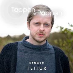 Toppen Af Poppen Synger Teitur - Various Artists
