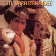 ALEJANDRO FERNANDEZ - Alejandro Fernández