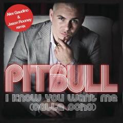 I Know You Want Me (Calle Ocho) (Alex Gaudino & Jason Rooney Remix)