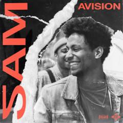 AVISION - SAM