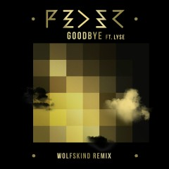 Goodbye (feat. Lyse) [Wolfskind Remix]