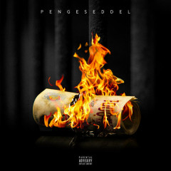 Pengeseddel (Single) - ATYPISK