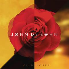 Wild Roses - John De Sohn