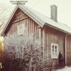 Undringar - Ted Gardestad