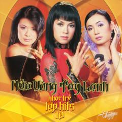 Top Hits 18 - Nửa Vòng Tay Lạnh - Various Artists
