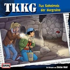 154/Das Geheimnis der Burgruine