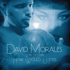 How Would U Feel - David Morales, Lea-Loríen
