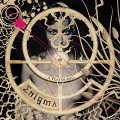 A Posteriori (Private Lounge Remix) - Enigma