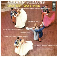 Bruno Walter Conducts Strauss - Bruno Walter