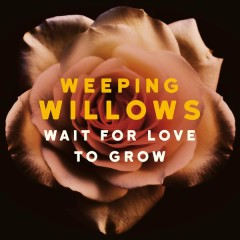 Wait for Love to Grow - Weeping Willows