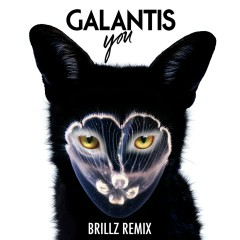 You (Brillz Remix) - Galantis