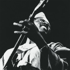The Source (2017 Remastered Version) - Ali Farka Touré