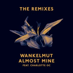 Almost Mine (The Remixes) - Wankelmut, Charlotte OC