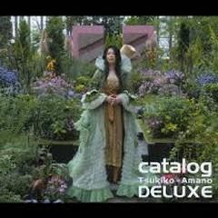 Catalog CD1