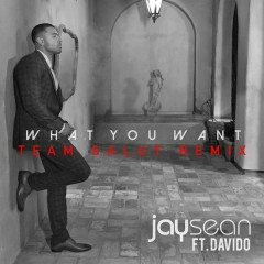 What You Want (Team Salut Remix) - Jay Sean,Davido