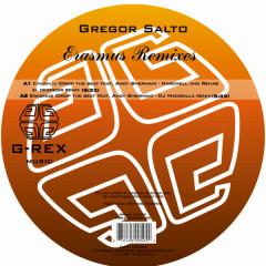 Erasmus Remixes - Andy Sherman, Gregor Salto