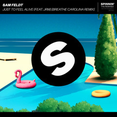 Just To Feel Alive (Breathe Carolina Remix) - Sam Feldt