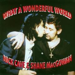 What A Wonderful World - Nick Cave, Shane MacGowan