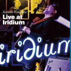 Live at Iridium - Kazumi Watanabe