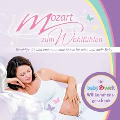 Mozart zum Wohlfühlen Beruhigende und entspannende Musik für mich und mein Baby - Various Artists