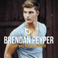 Stop Wag  Bly Nog 'n Bietjie - Brendan Peyper
