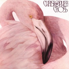Another Page - Christopher Cross