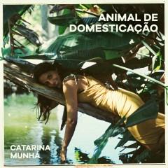 Animal de Domesticação