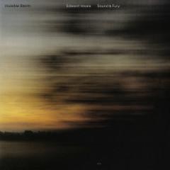 Invisible Storm - Edward Vesala, Sound & Fury