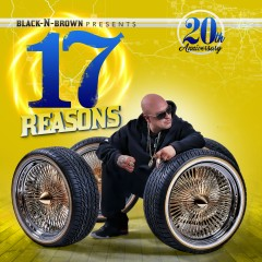 17 Reasons - Various Artists