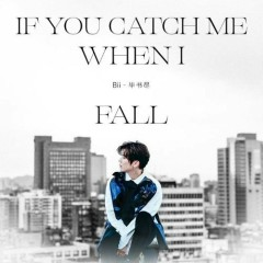 If You Catch Me When I Fall (Single)