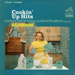 Cookin' Up Hits - Liz Anderson